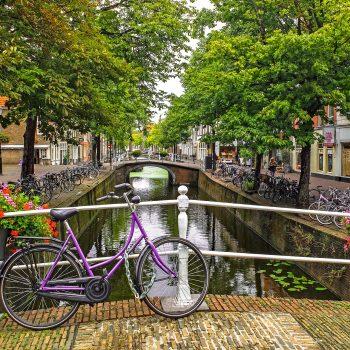 Nederlands 12